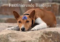Faszinierende Basenjis (Wandkalender 2020 DIN A3 quer) von Joswig,  Angelika