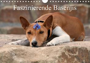 Faszinierende Basenjis (Wandkalender 2020 DIN A4 quer) von Joswig,  Angelika