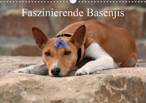 Faszinierende Basenjis (Wandkalender 2021 DIN A3 quer) von Joswig,  Angelika