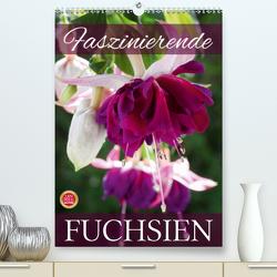 Faszinierende Fuchsien (Premium, hochwertiger DIN A2 Wandkalender 2020, Kunstdruck in Hochglanz) von Cross,  Martina
