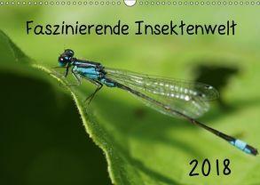 Faszinierende Insektenwelt (Wandkalender 2018 DIN A3 quer) von Grau,  Anke
