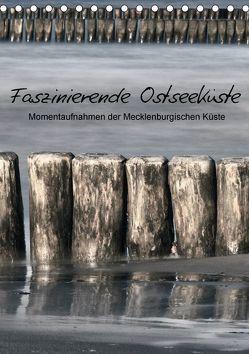 Faszinierende Ostseeküste (Tischkalender 2018 DIN A5 hoch) von Kürvers,  Gabi