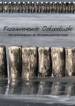 Faszinierende Ostseeküste (Tischkalender 2019 DIN A5 hoch) von Kürvers,  Gabi