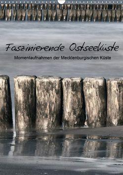 Faszinierende Ostseeküste (Wandkalender 2019 DIN A3 hoch) von Kürvers,  Gabi