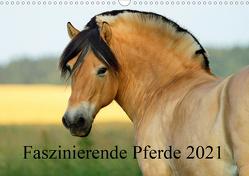 Faszinierende Pferde 2021 (Wandkalender 2021 DIN A3 quer) von Ludwig,  Sandra