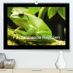 Faszinierende Reptilien (Premium, hochwertiger DIN A2 Wandkalender 2021, Kunstdruck in Hochglanz) von Herkenrath,  Sven