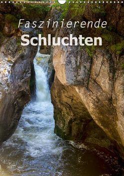 Faszinierende Schluchten (Wandkalender 2019 DIN A3 hoch) von Brunner-Klaus,  Liselotte