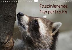 Faszinierende Tierportraits (Wandkalender 2020 DIN A4 quer) von kattobello