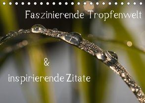Faszinierende Tropfenwelt & inspirierende Zitate (Tischkalender 2018 DIN A5 quer) von Potratz,  Andrea