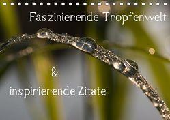 Faszinierende Tropfenwelt & inspirierende Zitate (Tischkalender 2019 DIN A5 quer) von Potratz,  Andrea