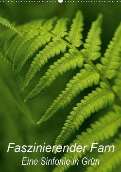 Faszinierender Farn – Eine Sinfonie in Grün (Wandkalender 2019 DIN A2 hoch) von Brigitte Deus-Neumann,  Dr.