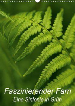 Faszinierender Farn – Eine Sinfonie in Grün (Wandkalender 2019 DIN A3 hoch) von Brigitte Deus-Neumann,  Dr.