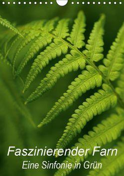 Faszinierender Farn – Eine Sinfonie in Grün (Wandkalender 2019 DIN A4 hoch) von Brigitte Deus-Neumann,  Dr.