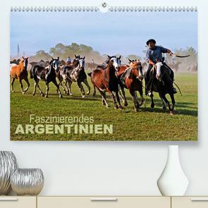 Faszinierendes Argentinien (Premium, hochwertiger DIN A2 Wandkalender 2021, Kunstdruck in Hochglanz) von Zillich,  Bernd