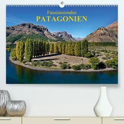 Faszinierendes Patagonien (Premium, hochwertiger DIN A2 Wandkalender 2021, Kunstdruck in Hochglanz) von Zillich,  Bernd