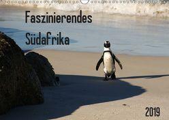 Faszinierendes Südafrika / CH-Version (Wandkalender 2019 DIN A3 quer) von Scholz,  Daniela