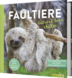 Faultiere – Natural born chiller
