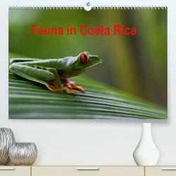 Fauna in Costa Rica (Premium, hochwertiger DIN A2 Wandkalender 2021, Kunstdruck in Hochglanz) von Bussenius,  Beate