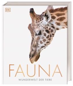 Fauna – Wunderwelt der Tiere von Harvey,  Derek, Jamie Ambrose, Kokoscha,  Michael