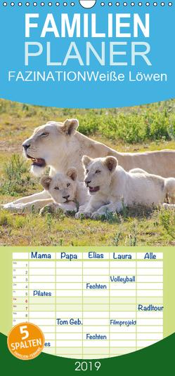 FAZINATION Weiße Löwen – Familienplaner hoch (Wandkalender 2019 , 21 cm x 45 cm, hoch) von Thula