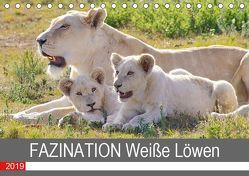 FAZINATION Weiße Löwen (Tischkalender 2019 DIN A5 quer) von Thula