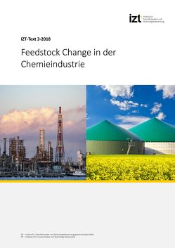 Feedstock Change in der Chemieindustrie von Behrendt,  Siegfried