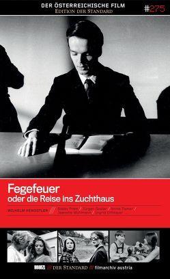 Fegefeuer oder die Reise ins Zuchthaus von Hengstler,  Wilhelm