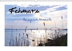 Fehmarn – Bewegende Momente (Wandkalender 2018 DIN A3 quer) von Giesecke,  Petra