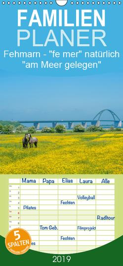 """Fehmarn – """"fe mer"""" natürlich """"am Meer gelegen"""" – Familienplaner hoch (Wandkalender 2019 , 21 cm x 45 cm, hoch) von Wackenhut,  Jürgen"""