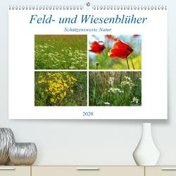Feld- und Wiesenblüher Schützenswerte Natur (Premium, hochwertiger DIN A2 Wandkalender 2020, Kunstdruck in Hochglanz) von Marten,  Martina