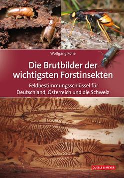 Feldbestimmungsschlüssel für die Brutbilder der wichtigsten Forstinsekten von Rohe,  Wolfgang