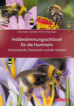 Feldbestimmungsschlüssel für die Hummeln Deutschlands, Österreichs und der Schweiz von Gereben-Krenn,  Barbara-Amina, Gokcezade,  Joseph, Neumayer,  Johann