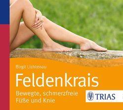 Feldenkrais – bewegte, schmerzfreie Füße und Knie von Lichtenau,  Birgit