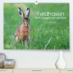 Feldhasen – dem Langohr auf der Spur (Premium, hochwertiger DIN A2 Wandkalender 2021, Kunstdruck in Hochglanz) von Eigenheer,  Sandra