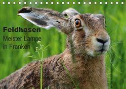 Feldhasen – Meister Lampe in Franken (Tischkalender 2019 DIN A5 quer) von Bachmeier,  Günter