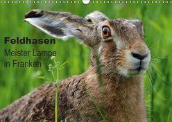 Feldhasen – Meister Lampe in Franken (Wandkalender 2019 DIN A3 quer) von Bachmeier,  Günter