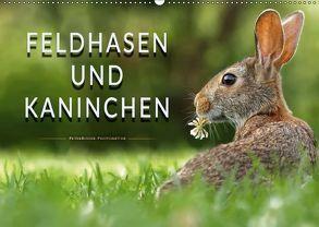 Feldhasen und Kaninchen (Wandkalender 2018 DIN A2 quer) von Roder,  Peter