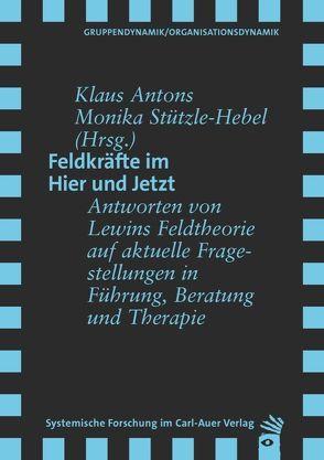 Feldkräfte im Hier und Jetzt von Antons,  Klaus, Stützle-Hebel,  Monika