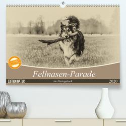 Fellnasen-Parade im Vintagelook (Premium, hochwertiger DIN A2 Wandkalender 2020, Kunstdruck in Hochglanz) von Teßen,  Sonja