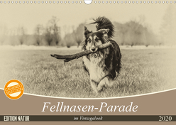 Fellnasen-Parade im Vintagelook (Wandkalender 2020 DIN A3 quer) von Teßen,  Sonja