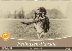 Fellnasen-Parade im Vintagelook (Wandkalender 2021 DIN A2 quer) von Teßen,  Sonja