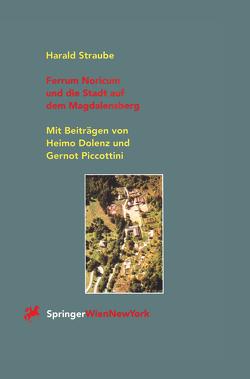 Ferrum Noricum und die Stadt auf dem Magdalensberg von Dolenz,  H., Piccottini,  G., Straube,  Harald