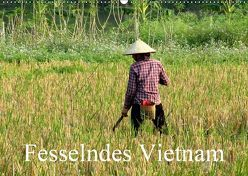 Fesselndes Vietnam (Wandkalender 2019 DIN A2 quer) von Voigt,  Vera