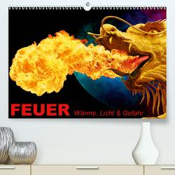 Feuer • Wärme, Licht & Gefahr (Premium, hochwertiger DIN A2 Wandkalender 2021, Kunstdruck in Hochglanz) von Stanzer,  Elisabeth