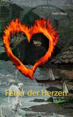 Feuer der Herzen von Haug,  Gabi