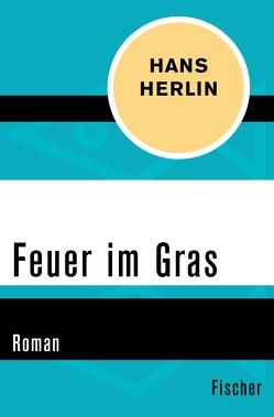 Feuer im Gras von Herlin,  Hans