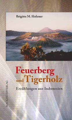 Feuerberg und Tigerholz von Holzner,  Brigitte M.
