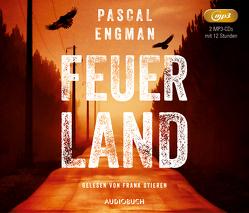 Feuerland von Engman,  Pascal, Müller,  Nike Karen, Stieren,  Frank