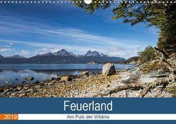 Feuerland – Am Puls der Wildnis (Wandkalender 2019 DIN A3 quer) von Neetze,  Akrema-Photography