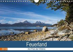Feuerland – Am Puls der Wildnis (Wandkalender 2019 DIN A4 quer) von Neetze,  Akrema-Photography